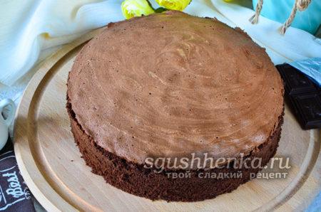 шоколадный брошенный бисквит