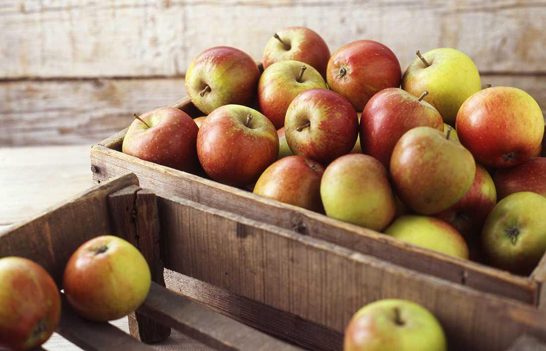 как сортировать яблоки
