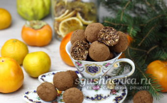 конфеты из овсяных хлопьев с какао