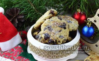 овсяное печенье с шоколадом и клюквой